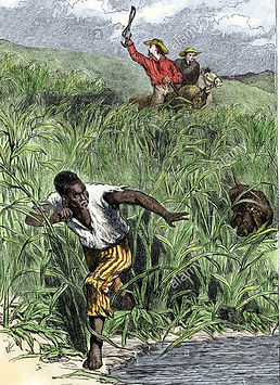 slave-fleeing-from-hunters_cr.jpg