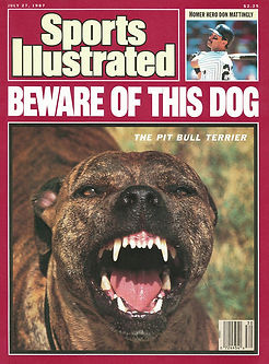 beware-of-this-dog-july-27-1987-sports-i
