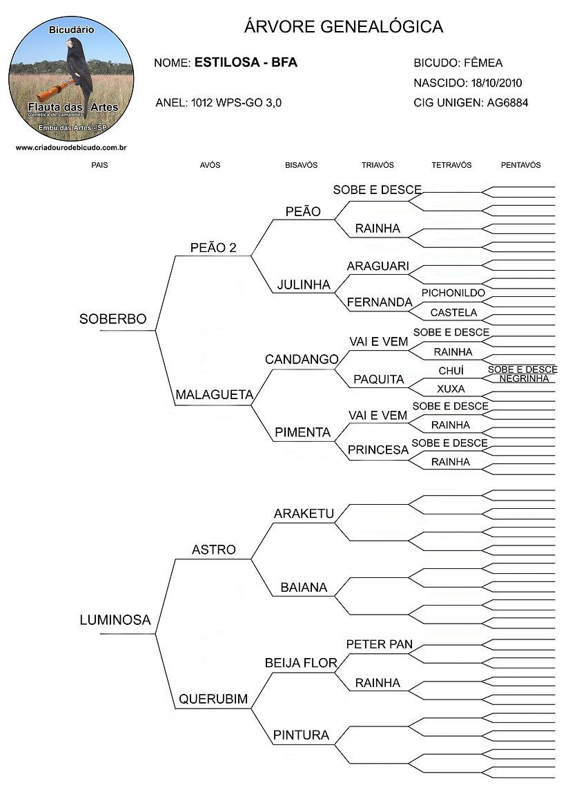 Bicudário Flauta das Artes   Bicuda Estilosa   Genealogia