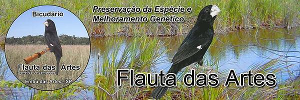 Bicudário Flauta das Artes - Especializado em Bicudos - Embu das Artes/SP