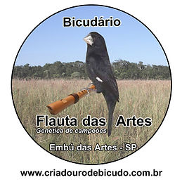 FLAUTA DAS ARTES.jpg
