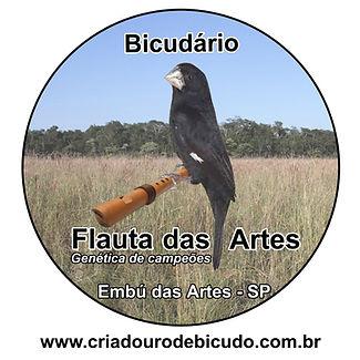 Bicudário Flauta das Artes   Criador de Bicudo verdadeiro   Contato do Criadouro de Filhotes