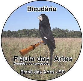 Bicudário Flauta das Artes - Bicudos Com Genética de Campeões Criadouro em SP