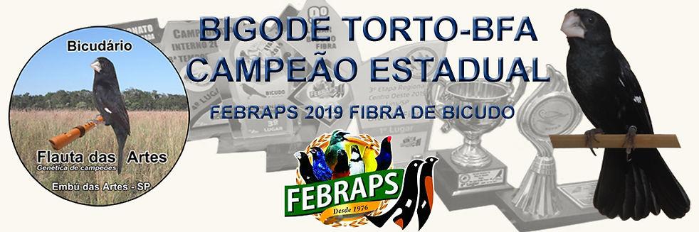 Criadouro Bicudário Flauta das Artes | Bicudo BIGODE TORTO Campeão FEBRAPS 2019 BICUDO FIBRA