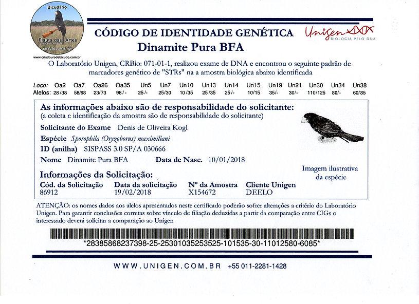 Bicudário Flauta das Artes   Bicuda Dinamite Pura   CIG