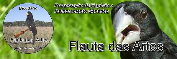 Bicudário Flauta das Artes - Criadouro de Bicudos - Embu das Artes/SP