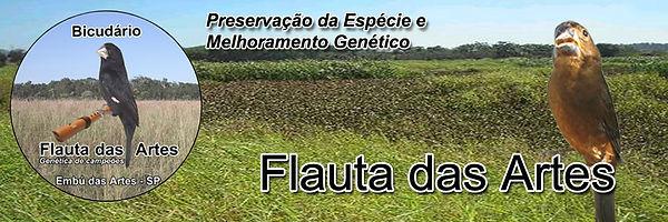 Bicudário Flauta das Artes - Criador de Bicudo - Embu das Artes/SP