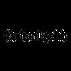 CarltonEyelab_Logo_Bk_edited_edited.png