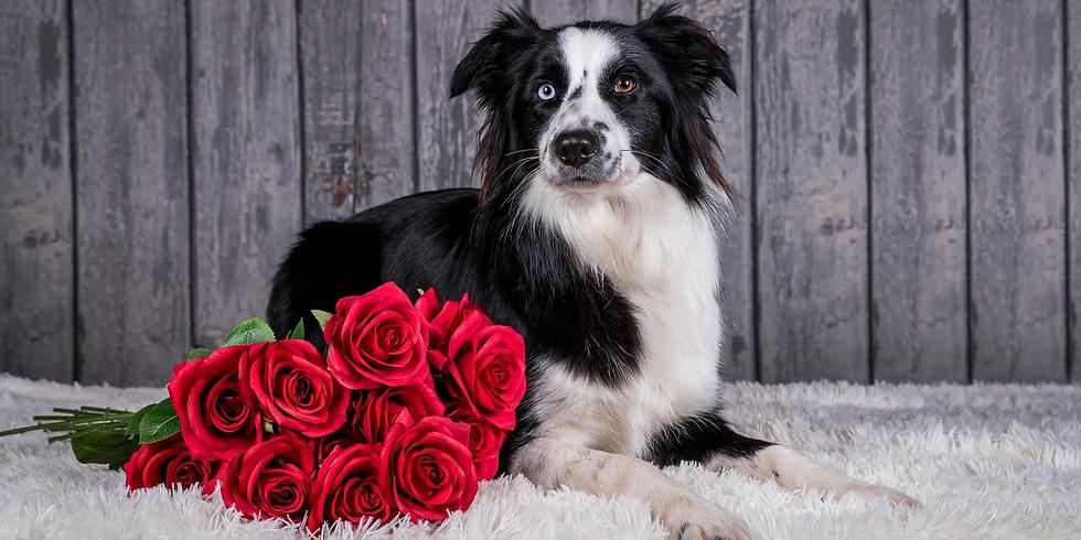 Valentijn-fotoshoot