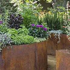 Edible Gardens Raised Beds