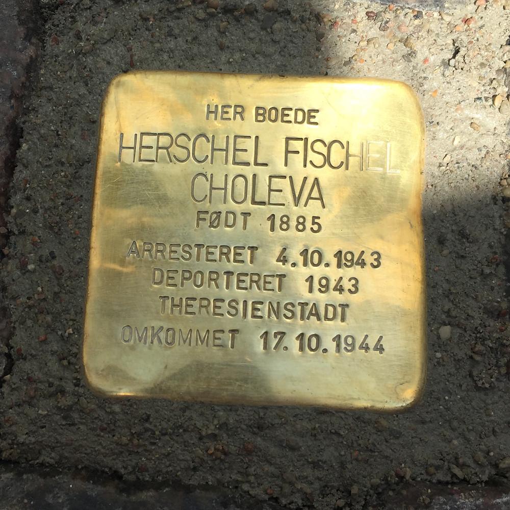 Herschel Fischel Choleva