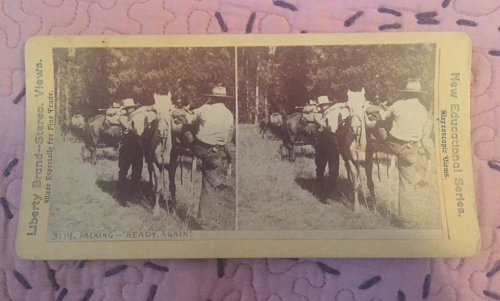 Three Antique stereoscopic viewing plates