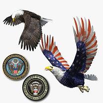 Bald Eagle Patriot Set