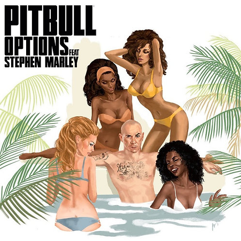 Pitbull ft Stephen Marley - Options (Clean) NM211-10