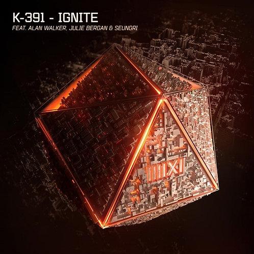 K391 ft Alan Walker, Julie Bergan & Seungri - Ignite ! (New Promo Radio Edit 7)