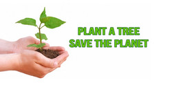 Plant A Tree,  Save The Planet