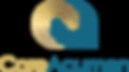 CoreAcumen_Logo-02 (1).png