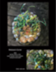 Medusa's Curse page copy.jpg