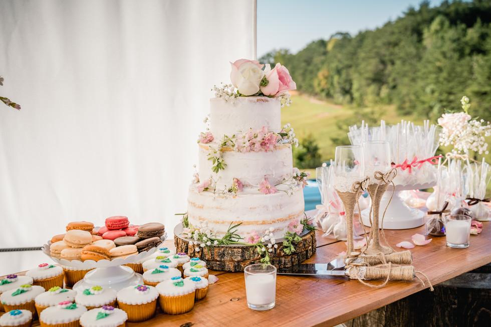 WUstudios_Greenville_Photography_Wedding