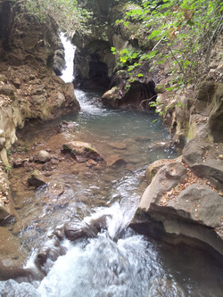 Water in the Banias River