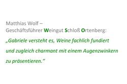 Stimme_Matthias Wolf