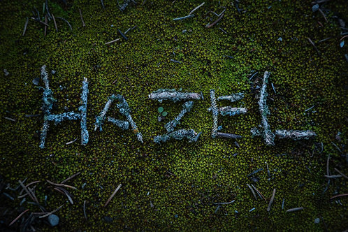 "Custom ""NatureNames"""