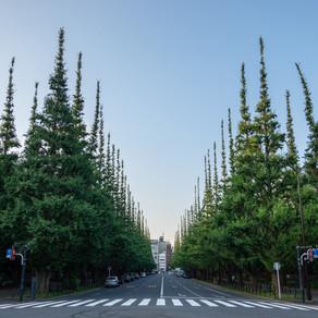 東京・南青山で不動産一筋35年