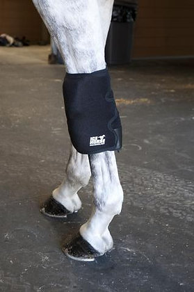 IceHorse Knee Wrap