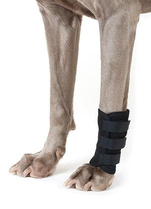 Therapeutic Dog Leg Wraps