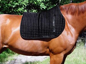 Therapeutic Dressage Saddle Pad