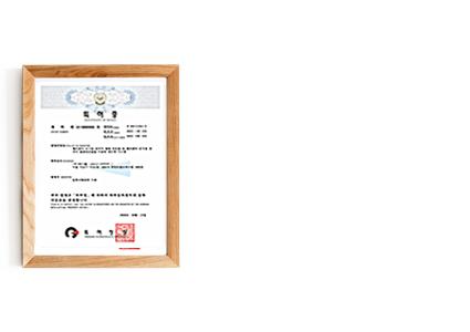 p03_06특허증(헬리콥터-순시용).png