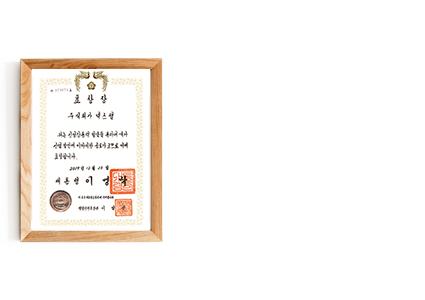 p01_03신-성장사업대상-대통령상장.png