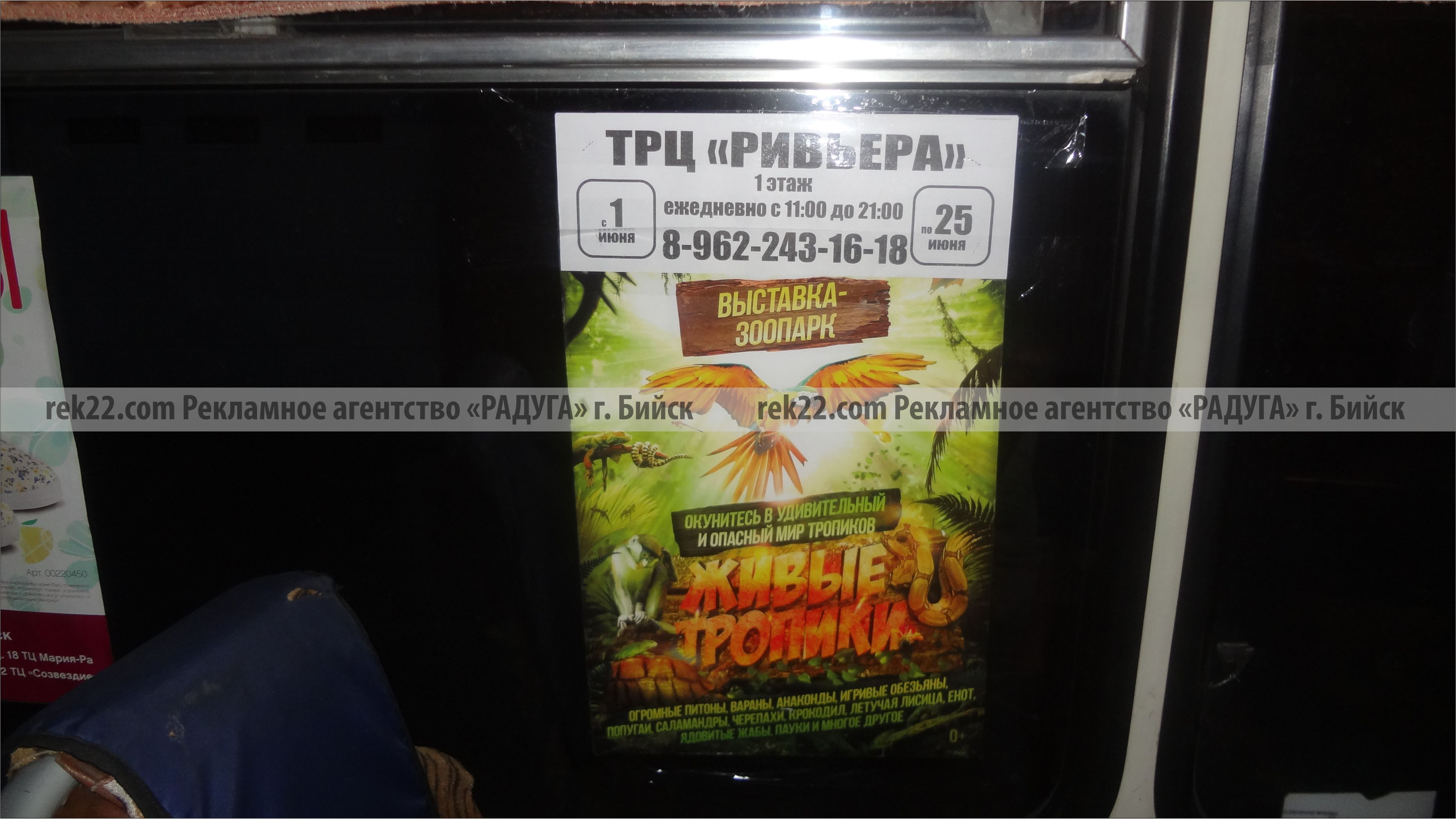 Реклама на транспорте Бийск - листовки - 6