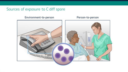 Sources of exposure to C diff spore.jpg