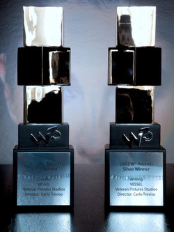 2013 Silver W³ Award Winner