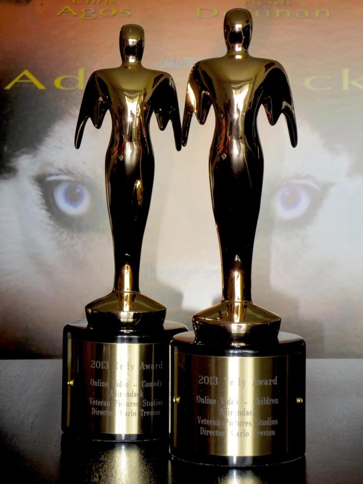 2013 Bronze Telly Award Winner