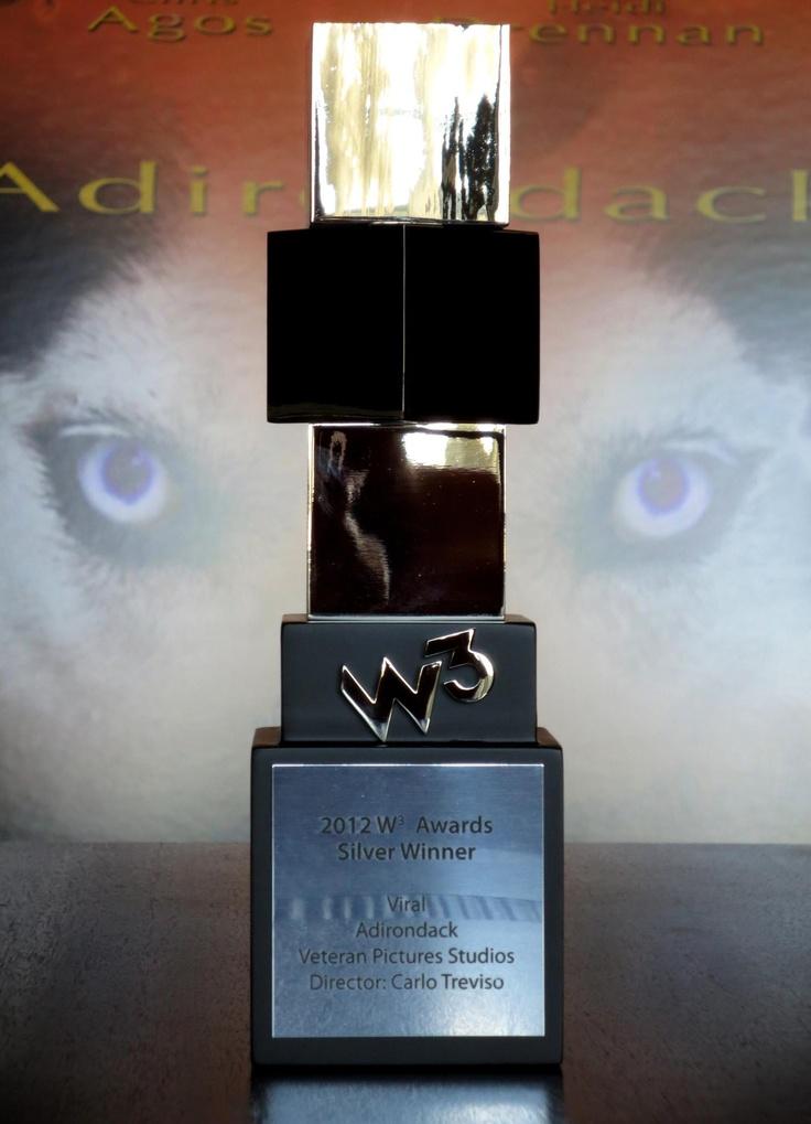 2013 W³ Award Winner