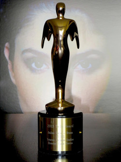 2013 Telly Award Winner