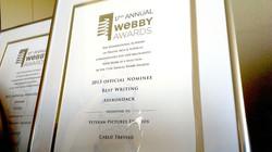 2013 Webby Award Nominee