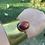 Thumbnail: Red Jasper Brass cuff