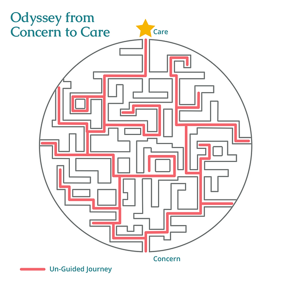 Odyssey from concern to care.png