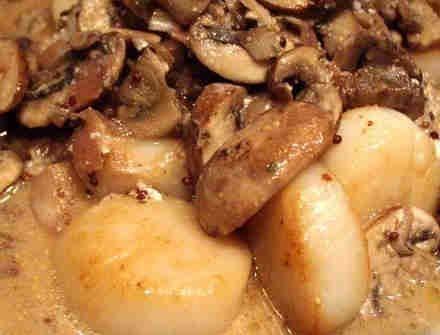 Scallots in Champagne Sauce