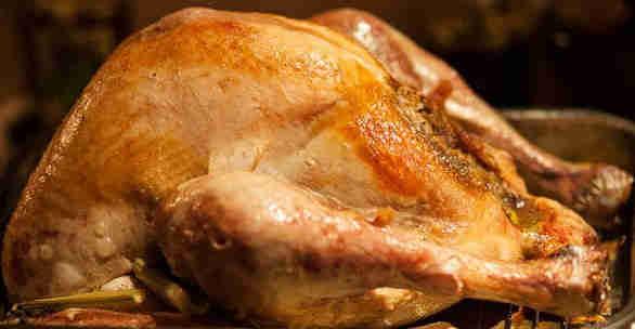 Thanksfiving Turkey