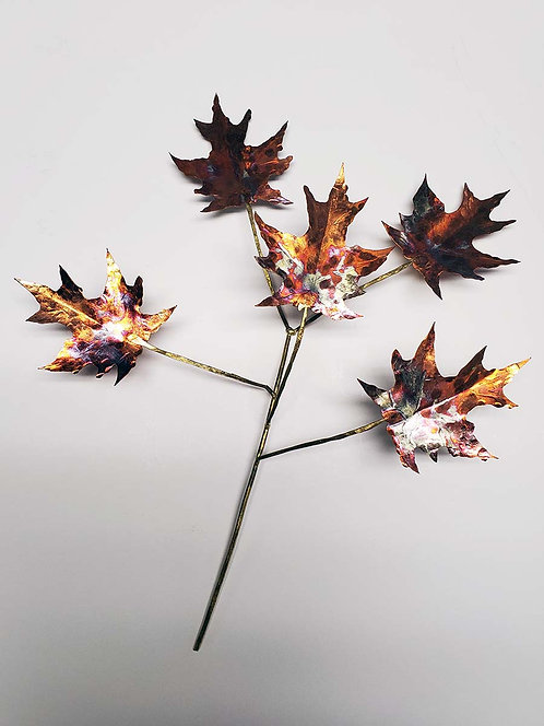 5 Maple Leaves on a Branch