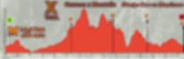 perfil M 2020 .jpg