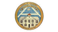 town logo - transparent.jpg
