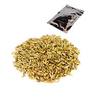 Fennel-with-Baggie.jpg