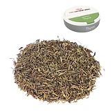 Thyme-with-Puck.jpg