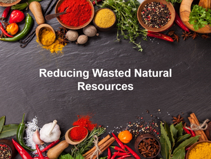 Sustainability - Reducing Wasted Natural Resources