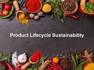 Product Lifecycle Sustainability